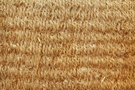 carpet clean: Close up brown color coconut fiber mat texture