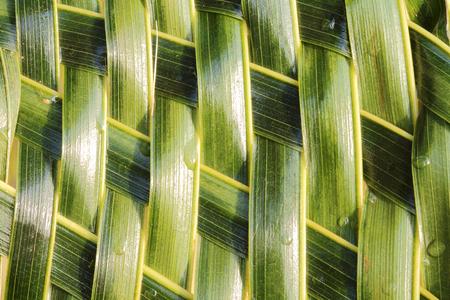 interlocking: Zigzag interlocking of coconut leaves weave
