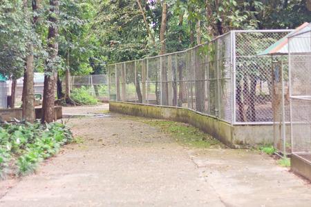 grating: old steel grating pattern on public natural park