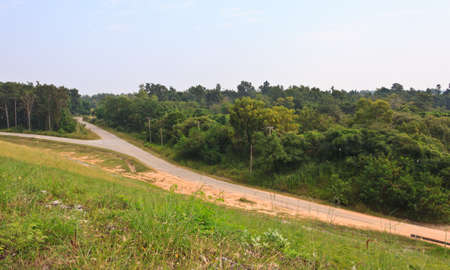 hiway: Road junction and forest