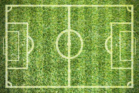 grass field: green natural grass of a soccer field
