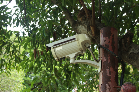 business security: Protect Your Property With CCTV Camera