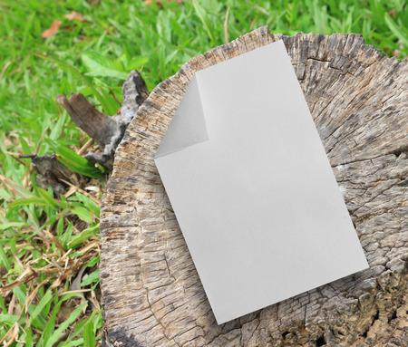paper texture: Paper texture Stock Photo