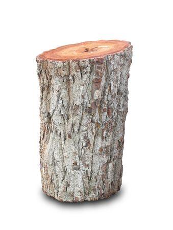 Baumstumpf auf weiß Standard-Bild