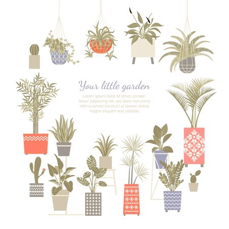 Set of vector illustrations of home plants in decorated and macram pots isolated on a white background. Home gardening collection
