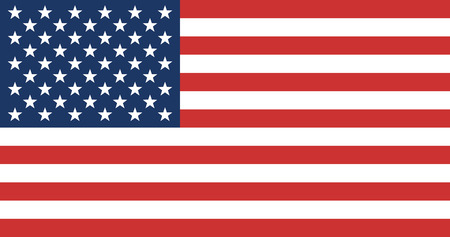 symbol vector: American Flag. United State of America Flag. Vector Illustration.