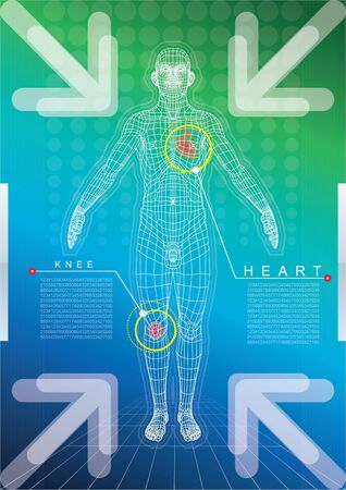 technological: Wireframe of human body Illustration