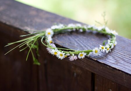 Crown of Daisies in Spring, shot with very shallow depth of field Stock Photo