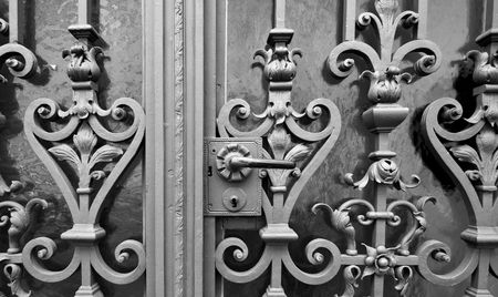 ironworks: Old Metal Doors, with ironworks, at Speyer, Germany Stock Photo