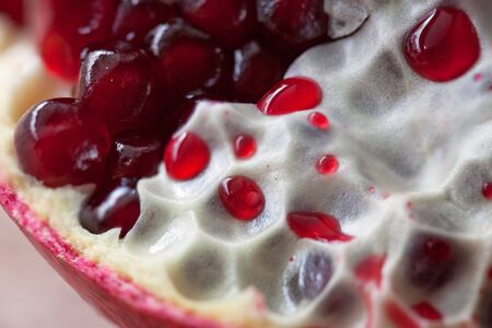 membranes: Pomegranate with arils detail shot with pulp and membranes