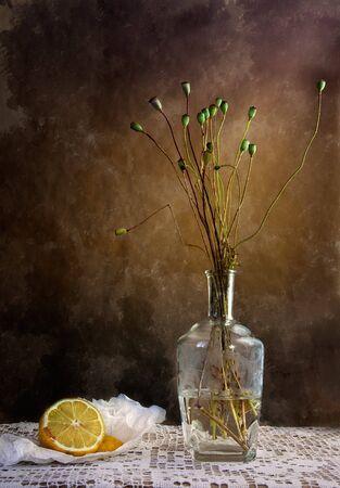 frutas secas: Still Life with Lemon y amapolas marchito en florero  Foto de archivo