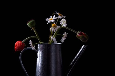 Still Life with poppies and daisies in old can photo