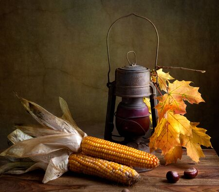 Still Life Autumn concept image with corn and maple leafs photo