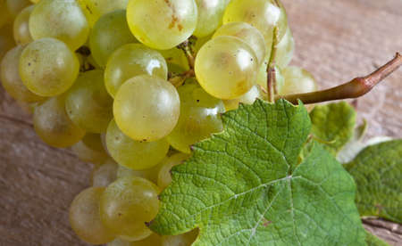 fresh and ripe white grapes on wooden board Stock Photo - 8584337