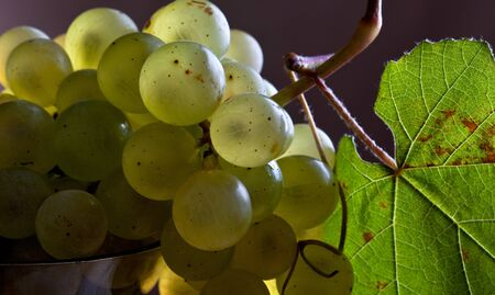 fresh and ripe white grapes on wooden board Stock Photo - 8584343