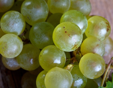 fresh and ripe white grapes on wooden board Stock Photo - 8584349
