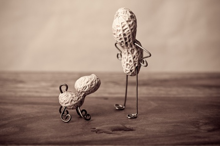 the piss: Miniature Still-Life with Peanut Man and Dog