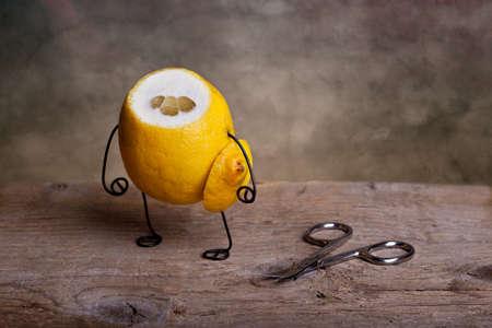 Still-Life with headless Lemon - Simple Things Stock Photo - 9406040