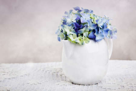 hydrangea macrophylla: Still-Life with blue Hortensia Flowers in porcelaine can