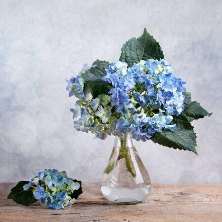 florero: Bodeg�n con flores azules de Hortensia en vaso de vidrio Foto de archivo