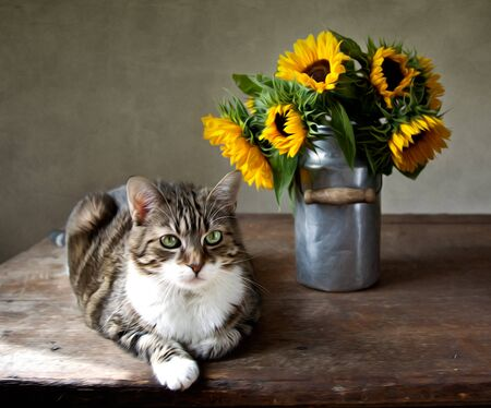 stilllife: Still-Life illustration in oil painting style of cat and sunflowers