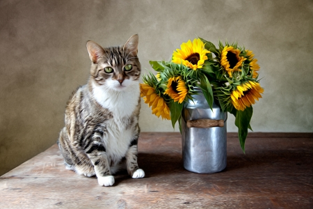 oil can: Still Life Illustration with Cat and Sunflowers in Oil Painting Style