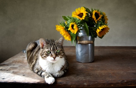 tableau: Still Life Illustration with Cat and Sunflowers in Oil Painting Style