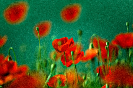 fineart: Illustration of Red Poppy Flowers in Oil Painting Style