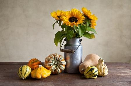 色と形の異なるカボチャと秋の静物