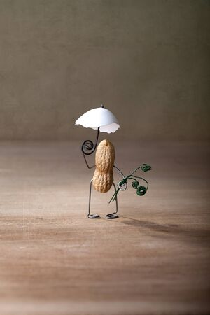 Miniature with Peanut Man taking a walk with Parasol photo