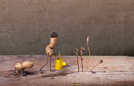tinkered: Miniature with Peanut Man doing garden work with his dog