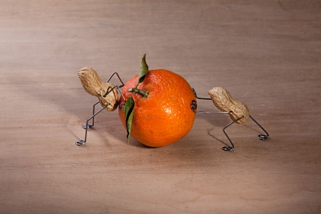 Miniature with Peanut People working against each other, failing to move the orange photo