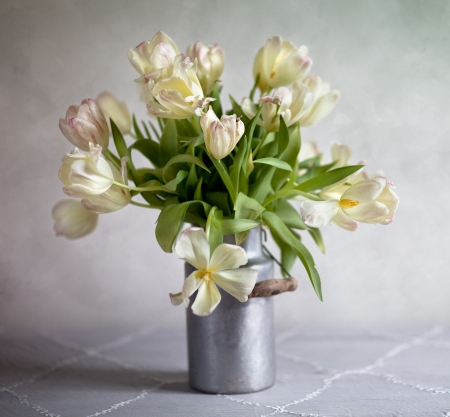 静物古いミルクのチューリップの花束を