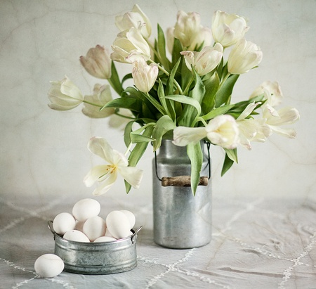 Still Life with Tulips in old milk can and eggs photo
