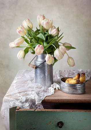cottages: Still Life with Tulips in old milk can and Pears Stock Photo