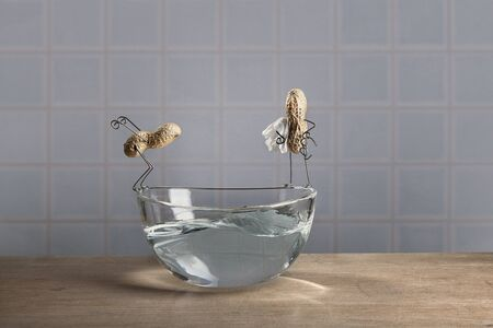 tinkered: Cosas de la serie Simple - Dos cacahuetes que van a nadar Foto de archivo