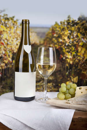 Cheese on board and white wine with blank labelled bottle Stock Photo - 12944459