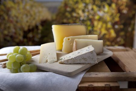 Three kinds of french cheese and white grapes photo