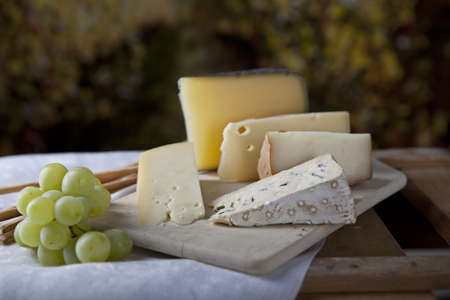 Three kinds of french cheese and white grapes Stock Photo - 12944440