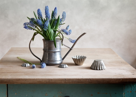 Still life with grape hyacinths arranged in an antique watering can with old moulds on a rustic wooden kitchen table