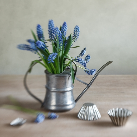 watering can: Still life with grape hyacinths arranged in an antique watering can with old moulds on a rustic wooden kitchen table