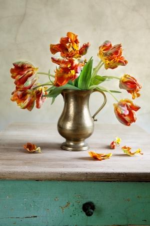 Ornamental orangey-yellow tulips in an antique metal jug with fallen petals on the old wooden tabletop Standard-Bild
