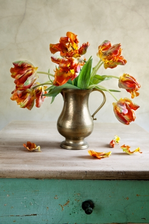 Ornamental orangey-yellow tulips in an antique metal jug with fallen petals on the old wooden tabletop  Stock Photo