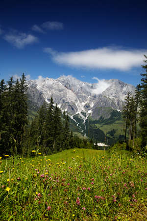 View of the Hochkoenig Mountains in the Austrian Alps from Muehlbach photo