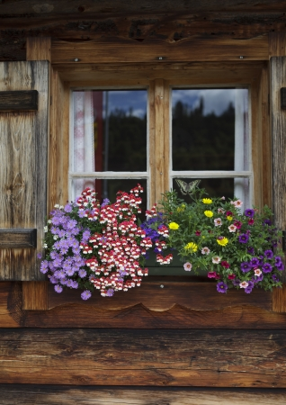 old window: Colorful Flower Arragement on the windows of an Alpine Cabin in Austria