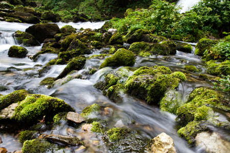 fresh water flowing in a small clear alpine mountain creek photo