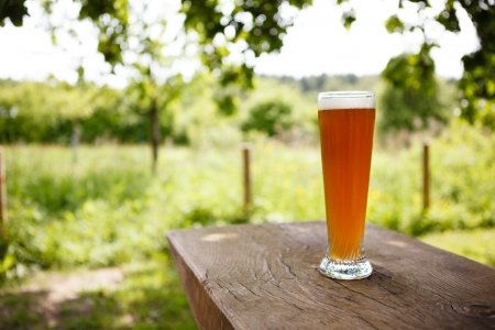 Full Glass of freshly tapped wheat beer serverd in an rustic beer garden in Germany Stock Photo