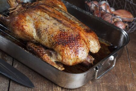 Crispy roasted Barbery Duck in in roasting pan ready for serving Stock Photo - 17970476