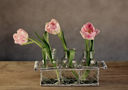 Three beautiful pastel colored pink tulips in glass vases and decorative metal basket photo