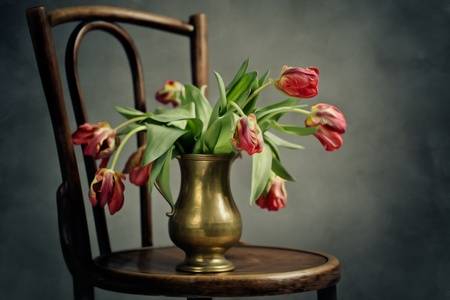 flowers in vase: Retro Still Life Illustration with withered tulips in metal vase